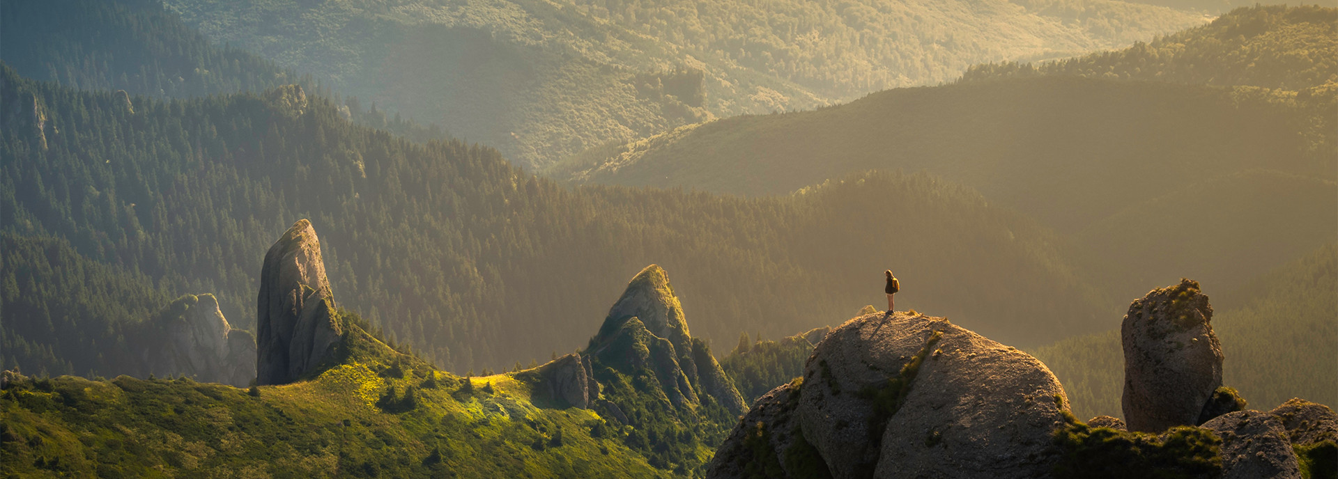 bergen'