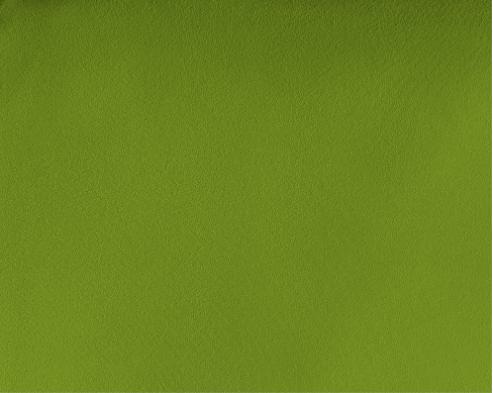 dreamhouse hoeslaken dubbel jersey green